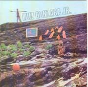 Luiz Gonzaga Jr. (É preciso,...)